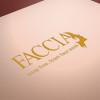 Faccia Face wash